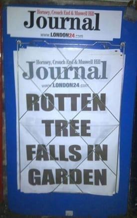 News stand headline - 'rotten tree falls in garden'