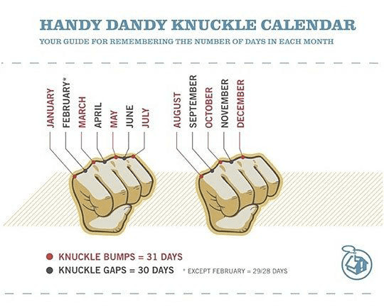 Handy Dandy Knuckle Calendar mnemonic long term memory learning, Create Mnemonics Because They are Powerful