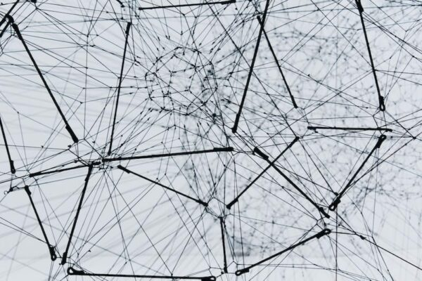 network wireframe